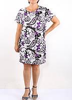 Платье Paper. Принт  фиолетовые огурцы., фото 1