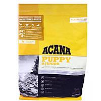 Корм Акана Акана Юниор Acana Puppy Junior для щенков собак от 9 до 25 кг с курицей и лососем 17 кг