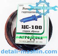 Ремкомплект гидроцилиндра ЦС-100*200 старого образца БДЮ р.к.3041