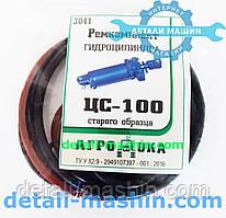 Ремкомплект гидроцилиндра ЦС-100*200 старого образца 3041