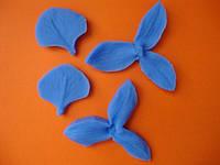 Вайнер орхидея