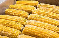 Кукуруза замороженная (початки), фасовка от 10 кг