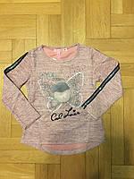 Реглан для девочек оптом, F&D, 4-12 лет., aрт.3796, фото 5