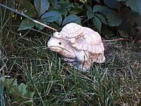 Гибкая форма *Черепашка*, фото 1