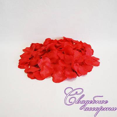 Лепестки роз красного цвета