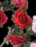 Искусственная роза раскрытая , 3 цветка , фото 7