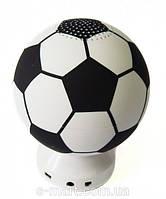 Портативная колонка YBH-168 в виде мяча