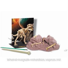 Набір для творчості Скелет тиранозавра 4M, фото 2