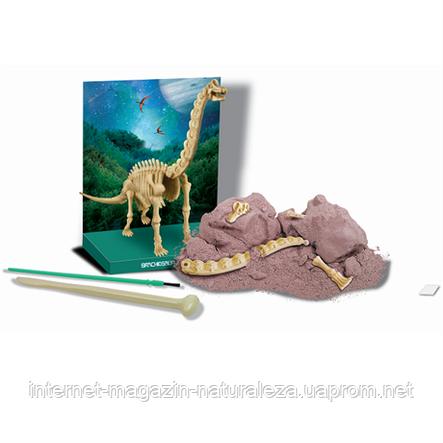 Набор для творчества Скелет брахиозавра 4M, фото 2