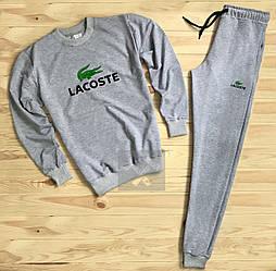 Спортивный костюм Lacoste серого цвета (люкс копия)