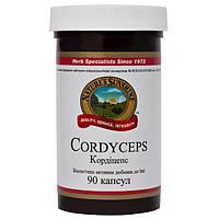 Кордицепс NSP- природный антибиотик.Останавливает хронический воспалительный процесс.