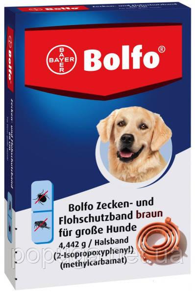 Bayer Bolfo ошейник от блох и клещей 66 см