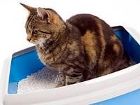 Наполнители, пакеты для кошачьих туалетов