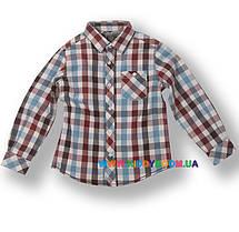 Рубашка для мальчика р-р 92-122 Silver Sun GC 32412