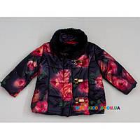 Куртка для девочки р-р 74-80 Baby Muz 0416к, фото 1