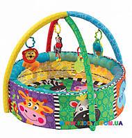 Развивающий коврик-бассейн Playgro 0184007