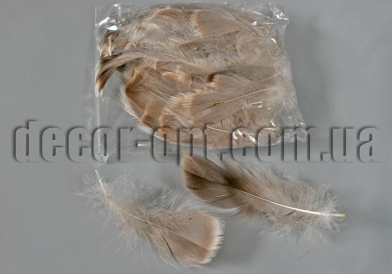 Пір'я натуральні 5-15 см 100 шт