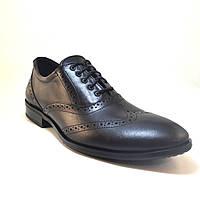 Мужская обувь больших размеров туфли кожаные оксфорды броги черные Rosso Avangard BS FeliceteZo Black Pelle