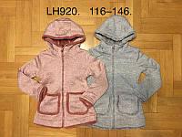 Пайта на меху для девочек оптом, F&D, 116-146 см,  № LH920, фото 1