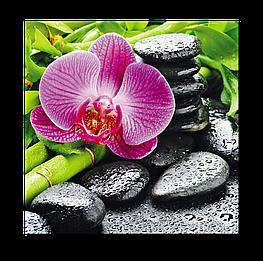 Картина на стекле Орхидея и спа камни