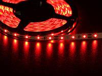 Светодиодная лента SMD 3528-60 led, красная, герметичная