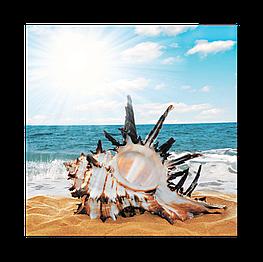 Картина на стекле Ракушка на пляже