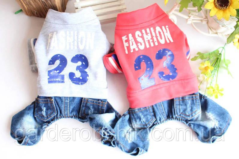 """Комбинезон, костюм джинсовый """" Fashion-23"""" для собаки. Одежда для собаки"""