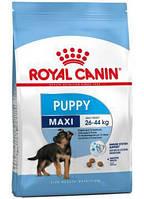 Сухой корм (Роял Канин) Royal Canin Maxi Puppy 15 кг для щенков собак крупных размеров
