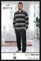 Пижама мужская Велюр  Cocoon T 98