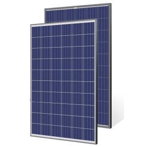 Сонячна панель Trina Solar TSM-275PD05 5bb