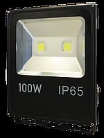 Works FL100 Прожектор LED (100W)