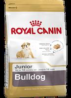 Сухой корм (Роял Канин) Royal Canin Bulldog Junior 12 кг для щенков английскийбульдог