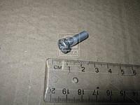 Винт с цилиндрической гол (пр-во Bosch) F 00N 202 191