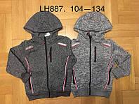 Пайты утепленные для мальчиков оптом, F&D, 104-134 см,  № LH887, фото 1
