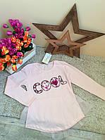 Лонгслив для девочек 6-14 лет Оптом и в розницу Турция Little star, фото 1