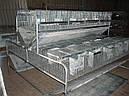 Клетка для кроликов КО 1,5 Ф  (откормочная 108 голов )., фото 2