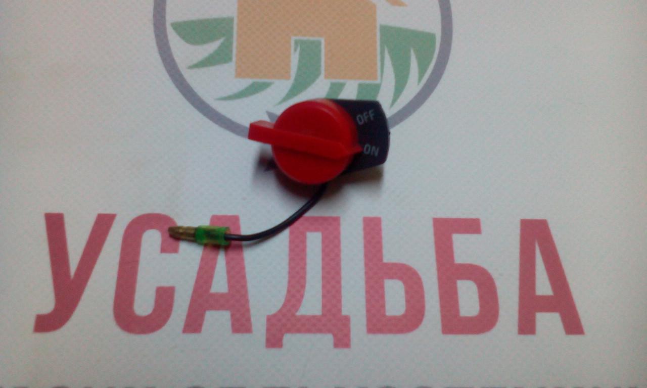 Кнопка вкл./выкл. зажигания 168F