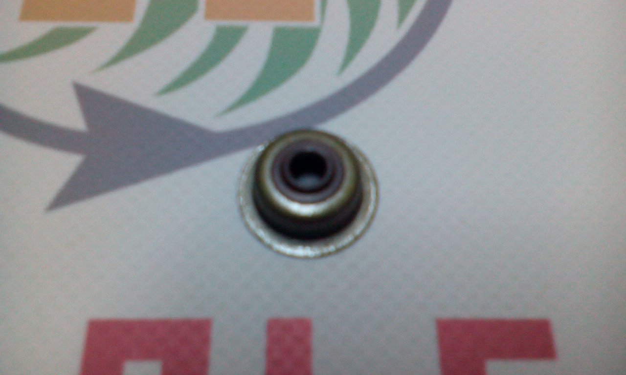 Сальник впускного клапана 168F