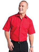 Пошив корпоративных мужских рубашек.