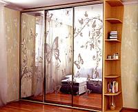 Купе Ультра 250х60х225(3 двери), фото 1