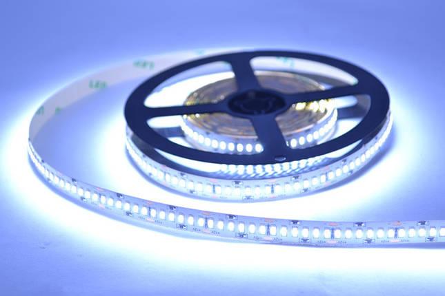 Светодиодная лента 3014-240 IP20, негерметичная, белая, фото 2