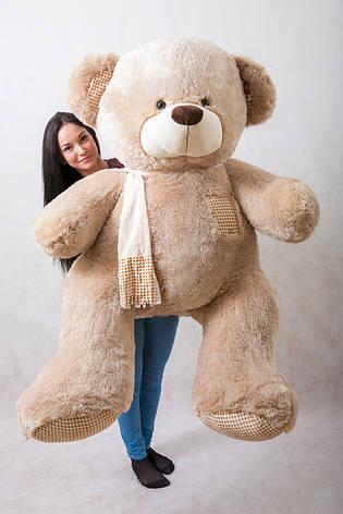 Великий плюшевий ведмідь, оренду, фото 2
