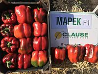 Семена перца МАРЕК F1 (КАРИСМА F1), 1000 семян New!, фото 1