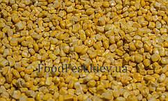 Кукурудза зерно заморожена солодка, фасування від 2,5 кг