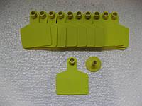 Ушная бирка б.н. C 58х70 мм (Крупный рогатый скот КРС)