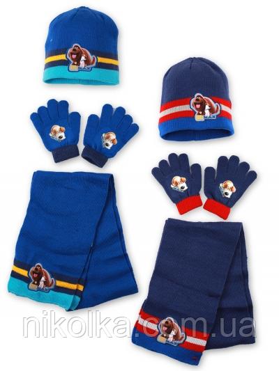 Шапки+перчатки+шарф для мальчиков оптом, Disney, 3-8 лет.,арт.780-586