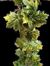 Листья Клён  Жёлтый Лиана Искусственная 14 метров