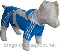 Костюм для собаки Тэнис с брюками, фото 1