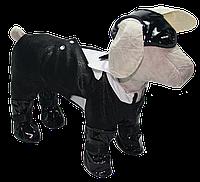Свадебный комбинезон для собаки- Шик