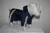 Комбинезон дождевик для собак Турист
